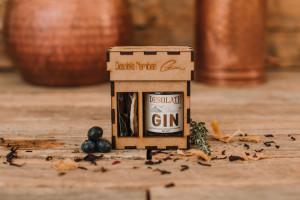 Gin(54)